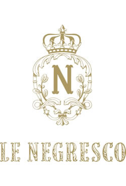 download brochures nice hotel the negresco hotel on the french riviera